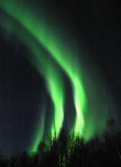 The Northern Lights dancing in the sky above Fairbanks, Alaska (IMG_4605a) (Alaskan Dude) Tags: travel alaska fairbanks northernlights auroras otw 5photosaday