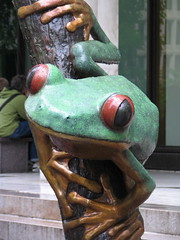 A Different Kind of Frog