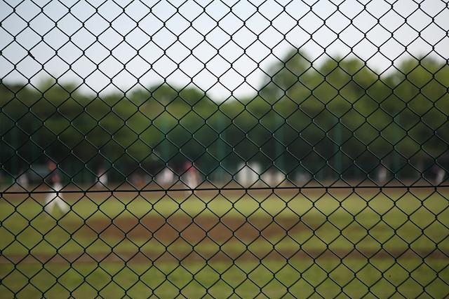 公園のフェンス