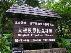 大板根森林渡假村