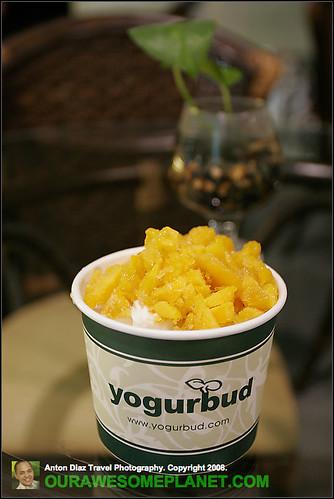 Yogurbud-4