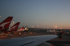 Good morning Sydney (T-R-U-E-M-A-N) Tags: new morning red white atc sunrise hongkong airport aircraft tail wing australia vehicles airline nsw airbus a380 newsouthwales boeing airways syd qantas sq tails wingtip 747400 sydneyairport cathaypacific singaporeairlines martinair southernhemisphere oneworld 744 groundcrew yssy july31st 747f 74f iata 747400f a380800 a388 sqsingaporeairlines