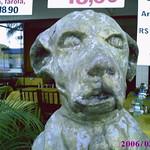 Sorriso: a beloved mutt - um vira-lata amado thumbnail