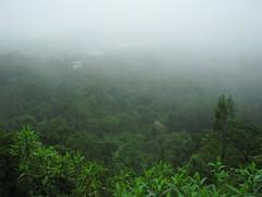 On the way to Mullayangiri !!! (Sanjay, the Recluse !) Tags: india canon is pics powershot karnataka s5 mullayangiri