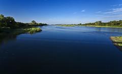 Platte River near Doniphan, NE (hz536n/George Thomas) Tags: blue summer sky bird river nebraska canon5d 2008 smrgsbord cs3 kartpostal