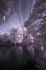 Lake And Clouds In Shakuji-koen (aeschylus18917) Tags: danielruyle aeschylus18917 danruyle druyle 赤外線 ir infrared landscape scenery surreal nikond70 tree nikon d70 ダニエルルール ダニエル ルール park 公園 庭 japanesegarden grass trees nerima 練馬区 nerimaku tokyo japan 上石神井駅 東京 lake pond 日本 石神井 shakujiikoen 1224mm pxt
