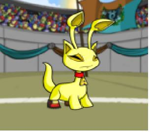 My neopet is Hungry!