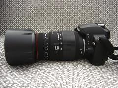 Nikon D60 & Sigma AF 70-300mm f/4-5.6 APO DG Macro (CAUT) Tags: camera lens nikon sigma hood dslr nikond60 apodg sigmaaf70300mmf456apodgmacro sigmahood