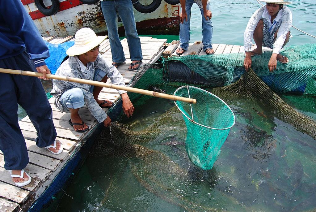 Pescando marisco en las aguas de Nha Trang