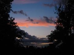 (robin dennis) Tags: england london stokenewington clissoldpark northlondon