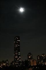 IMG_7180 (aveoree) Tags: newyork america 美国 纽约