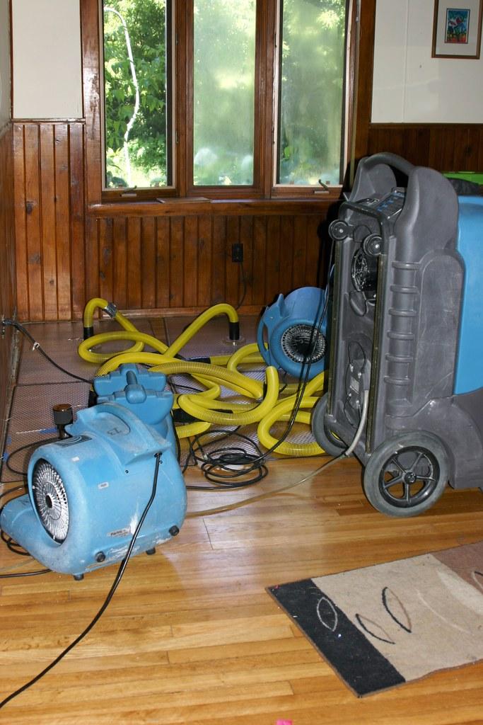 Water Damage to Wood Floors