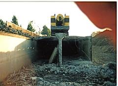 Carmel Terrace Tunnel  (The Tunnel Of Love) (etgeek (Eric)) Tags: tunnel losaltos blachschool permanentecreek bypasscreek 9682742