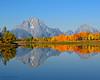 Oxbow Bend - Grand Teton NP (Dave Stiles) Tags: fallcolors explore mountmoran aspen tetons gtnp oxbowbend
