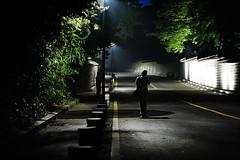 2127/1814*:z^ (june1777) Tags: snap street seoul deoksugung night light shadow photographer 5d leica summicronr 90mm f2 3200 clear canon eos summicron r e favz