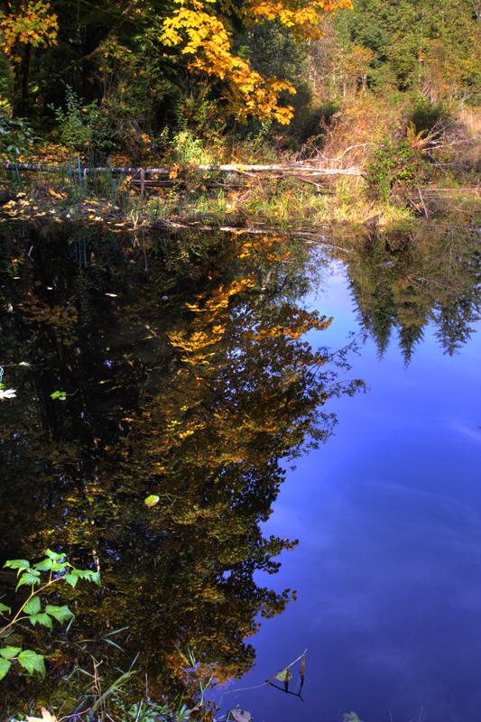 pond_5819_20_21