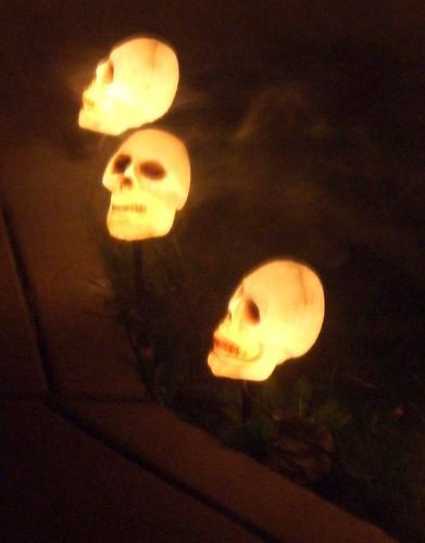 Creepy night skulls with fog