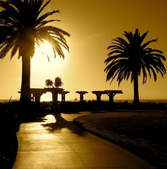 paved in gold? (SmartAnnie (Away)) Tags: silhouette sepia southerncalifornia orangecounty treasureislandpark southlagunabeach romanticrendezvous
