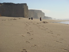 MartinsBeach_2007-079 (Martins Beach, California, United States) Photo