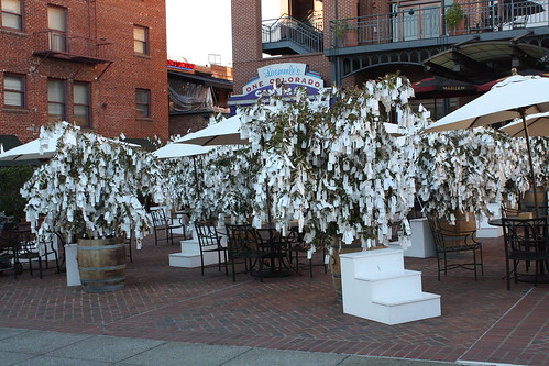 """""""Wish Tree for Pasadena"""" by Yoko Ono at One Colorado Courtyard, 11-06-08 - 1 by you."""
