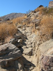 Museum Trail (Palm Springs, California, United States) Photo