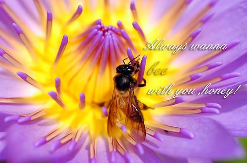 bee with u