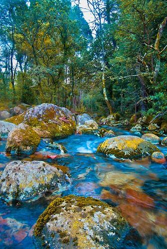 regato  no  rio  pedras por MARAÑAS.