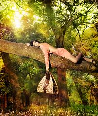 alexandra miranda - bags (negib) Tags: forest ale asuncion paraguay bags miranda eleonora carteras elitephotography gnneniyisithebestofday photoartbloggroup
