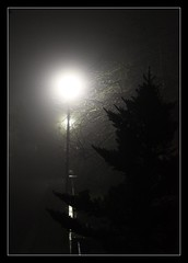there's a light.... (photos4dreams) Tags: light mist night nighttime lantern xfiles theresalight photos4dreams p4d