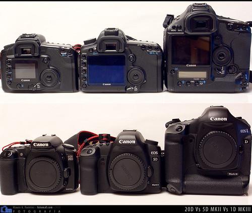 3116327343 63d98a7fc1 Canon 5D MKII: Primer contacto