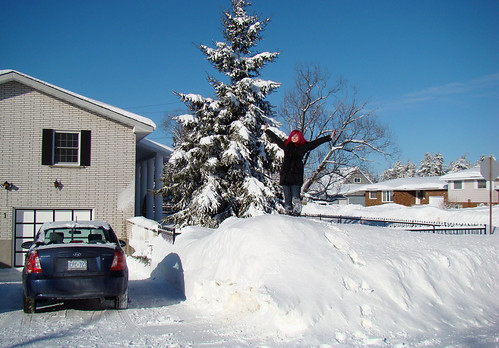 Top of the snowbank