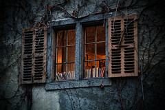 window, © Chris Marquardt