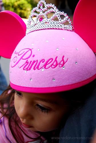 princess ears