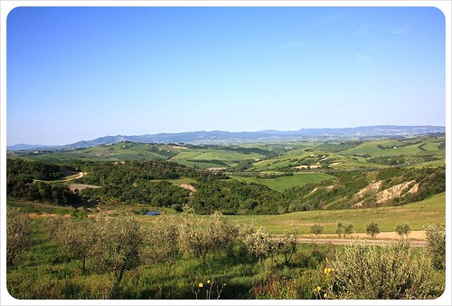 Belmonte vacanze olive trees & view