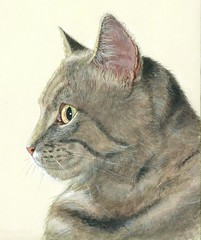 "Cat - Acrylic on Canvas • <a style=""font-size:0.8em;"" href=""http://www.flickr.com/photos/64357681@N04/5866988526/"" target=""_blank"">View on Flickr</a>"
