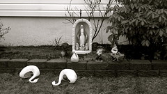 Shrine On You Crazy Diamond (robertvena) Tags: blackandwhite art statue garden photography design funny shrine humorous lol humor saints scene swans angels alter gnomes robvena robertvena robertavena