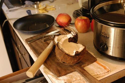 ready to make coconut ice cream