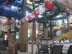 Great Wolf Lodge, March Break