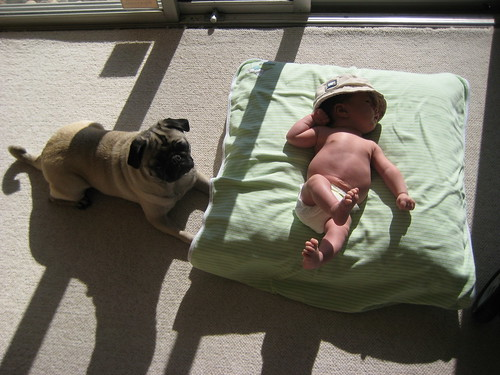 Getting their Vitamin D