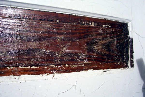 Ohw View Topic Removing Paint But Not Shellac On Trim