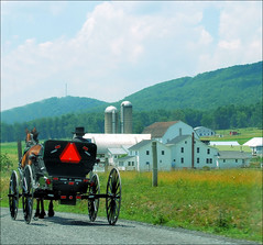 On the Way Home (ShacklefordPhotoArt) Tags: pennsylvania barns farmland amish farms pennsylvaniadutch