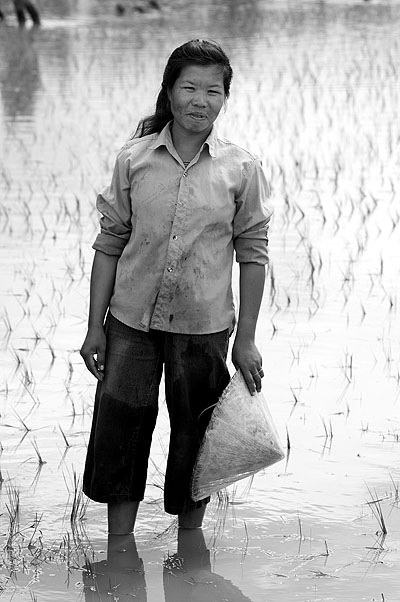 Rice farmer outside Phonsavan, Laos