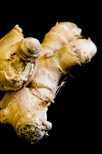 Ginger Root by  J. Pollack Photography.