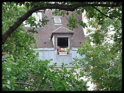 Entre árboles - Buhardilla parisina