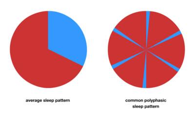 polyphasic_chart