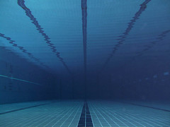 Swimming Pool Reflection (MOHAMMED AL-SALEH) Tags: underwater swimmingpool kuwait mohammad   vwc swimmingpoolreflection kuwaitvoluntaryworkcenter