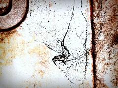 Grundgy Kandinsky (hurleygurley) Tags: haiku kandinsky grunge pipe cement hard stained sidewalk cracks minimalism homage minimalist cracked lessismore