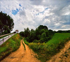 Where to (Katarina 2353) Tags: wood bridge blue trees sky flower green film nature yellow clouds forest way landscape photography nikon europe flickr image path serbia paisaje cielo poppies fields paysage priroda vojvodina srbija tjkp serbie vajdasag pejza katarinastefanovic katarina2353