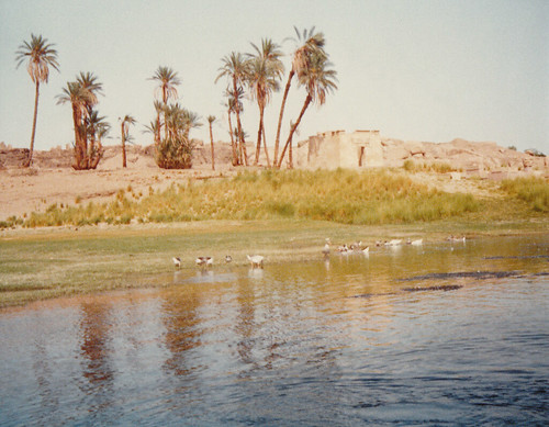 The River Nile - Egypt