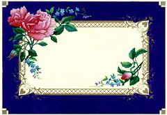 old cards blue (* angelandim *) Tags: roses poster cards engraving prints rosas arabesque cartes estampas postais oldcards